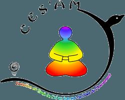 logo CESAM 250
